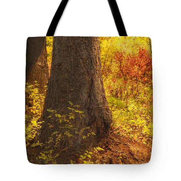 Sunstream Tote Bag