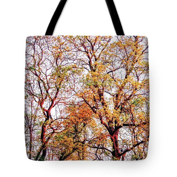 Sunstroke Tote Bag
