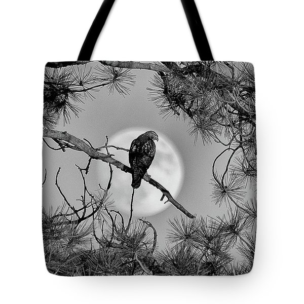 Super Moon Hawk Tote Bag