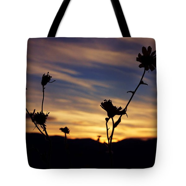Superbloom Sunset In Death Valley 100 Tote Bag by Daniel Woodrum