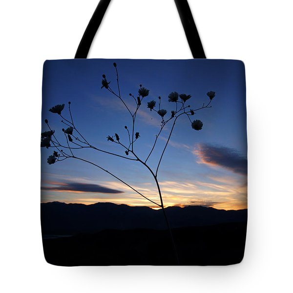 Superbloom Sunset In Death Valley 101 Tote Bag by Daniel Woodrum