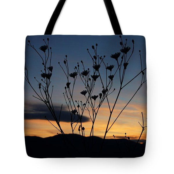 Superbloom Sunset In Death Valley 103 Tote Bag by Daniel Woodrum