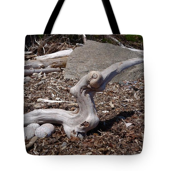 Tote Bag featuring the photograph Superior Driftbird On Nest by Sandra Updyke