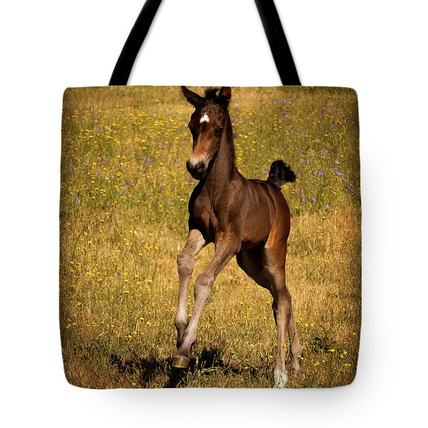 Surprise Party Tote Bag