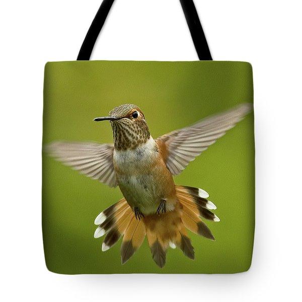 Surprise Tote Bag