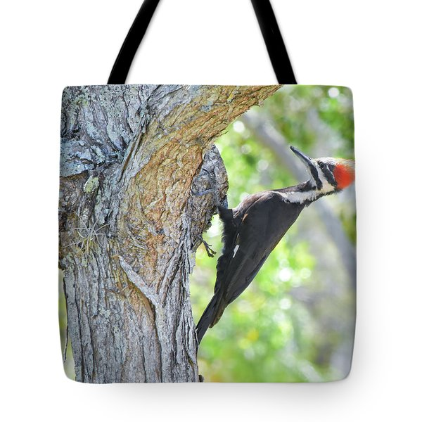 Surprised By Pileated Tote Bag