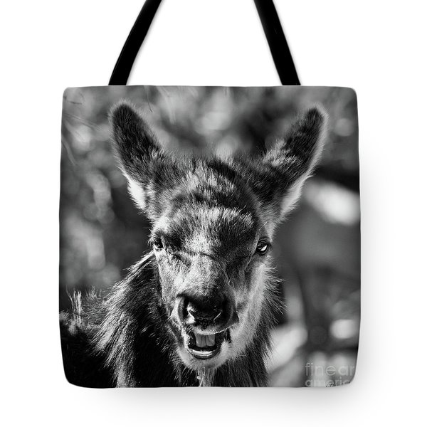 Surprise, Black And White Tote Bag