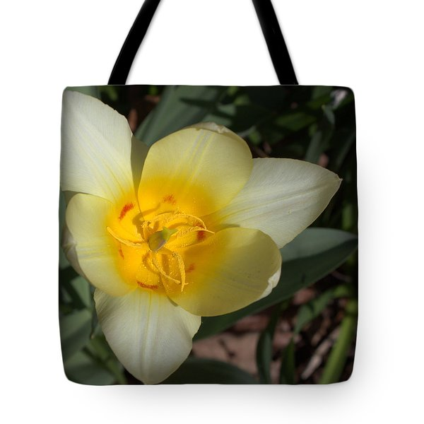 Surprising Sunny Tulip Tote Bag by Liz Allyn