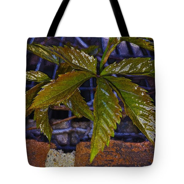Surreal Climatis Tote Bag