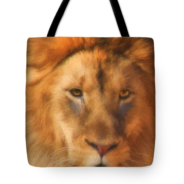 Tote Bag featuring the photograph Surveying His Dominion by Kyle Findley