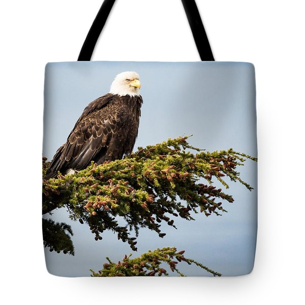 Surveying The Treeline Tote Bag