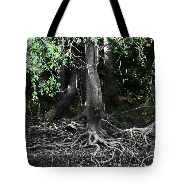 Tote Bag featuring the photograph Survival Of The Fittest by Debra Forand