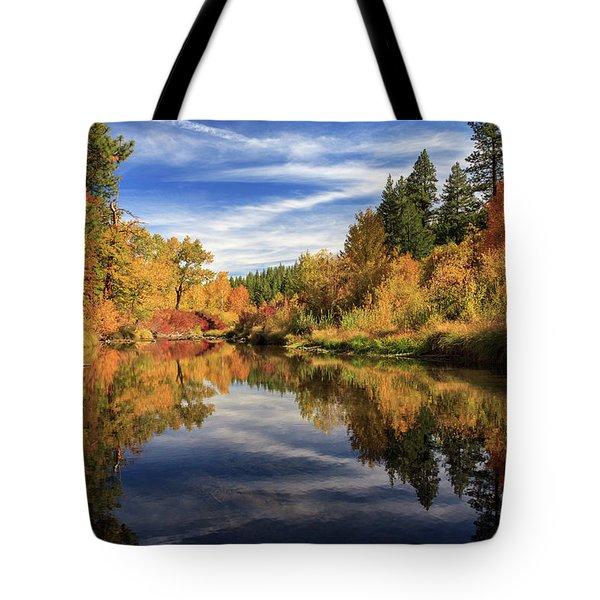 Susan River 10-28-12 Tote Bag by James Eddy