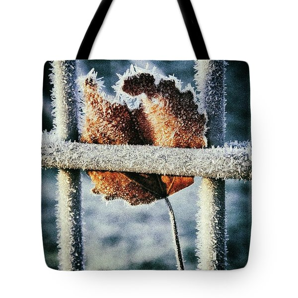 Suspended Tote Bag by Karen Stahlros