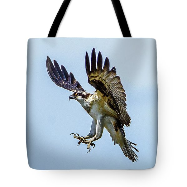 Suspended Osprey Tote Bag by Jerry Cahill