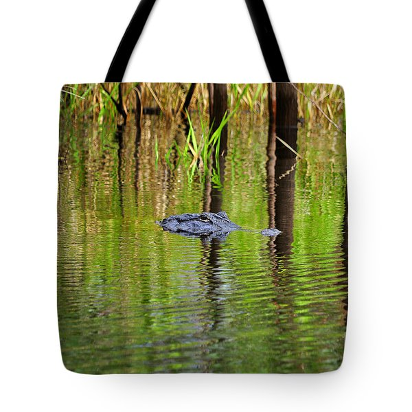 Tote Bag featuring the photograph Swamp Stalker by Al Powell Photography USA