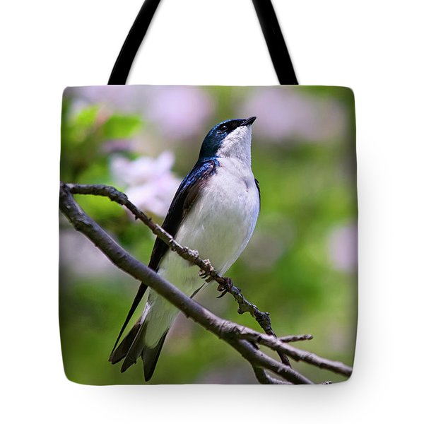 Swallow Song Tote Bag by Christina Rollo
