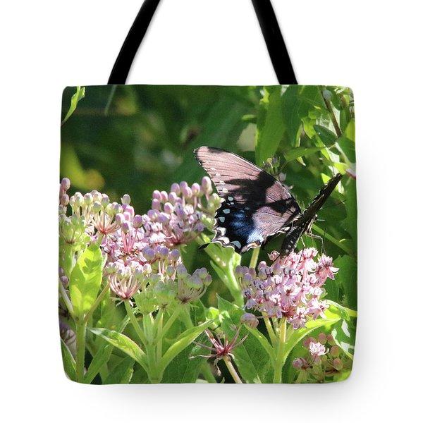 Female American Swallowtail Papilio Polyxenes Tote Bag