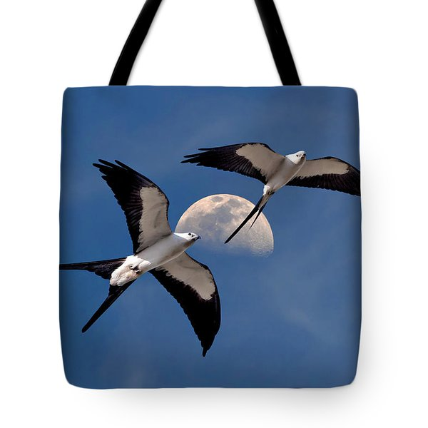 Tote Bag featuring the photograph Swallow Tail Kites In Flight Under Moon by Justin Kelefas