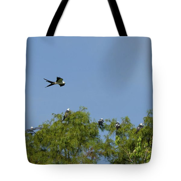 Swallow-tailed Kite Flyover Tote Bag by Paul Rebmann