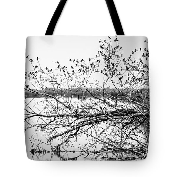 Tote Bag featuring the photograph Swallows At Horicon Marsh  by Ricky L Jones