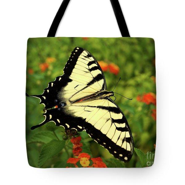 Swallowtail Among Lantana Tote Bag by Sue Melvin