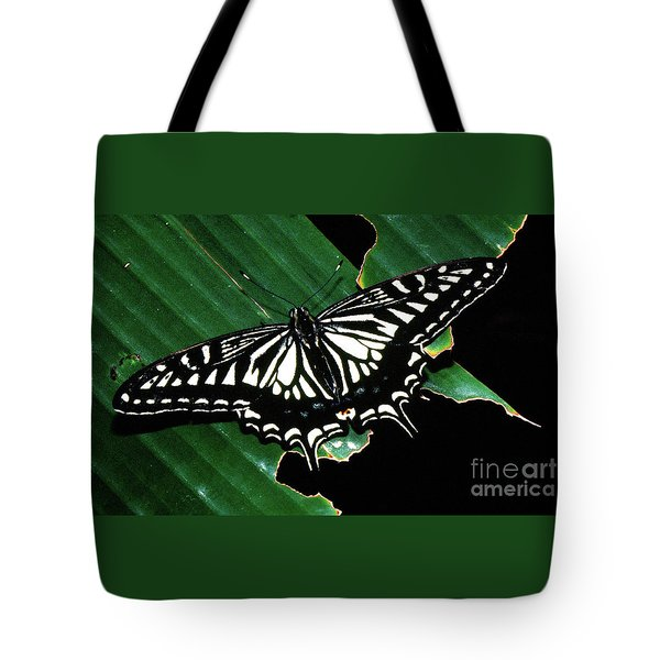 Swallowtail Butterfly- Close Tote Bag