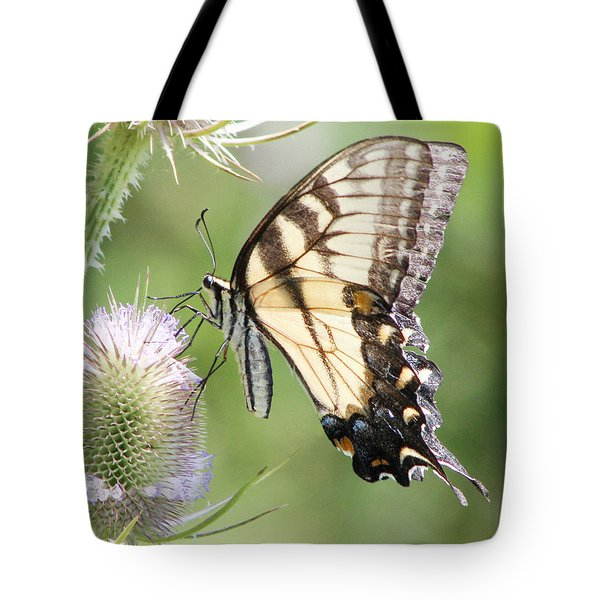Swallowtail Delight Tote Bag by Anita Oakley