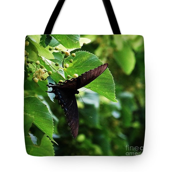 Swallowtail Summer Tote Bag by J L Zarek