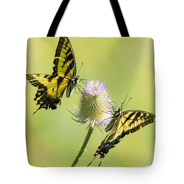 Swallowtails On Thistle  Tote Bag