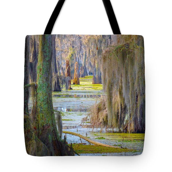 Swamp Curtains In February Tote Bag