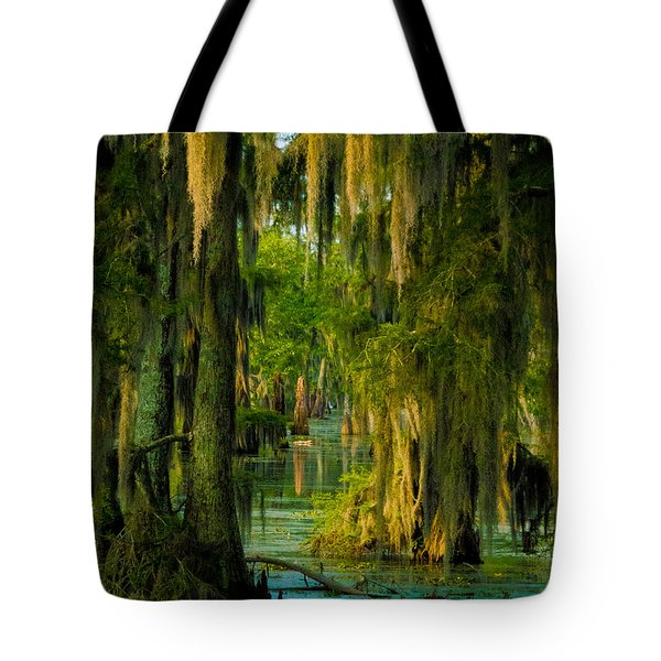 Swamp Curtains In May Tote Bag