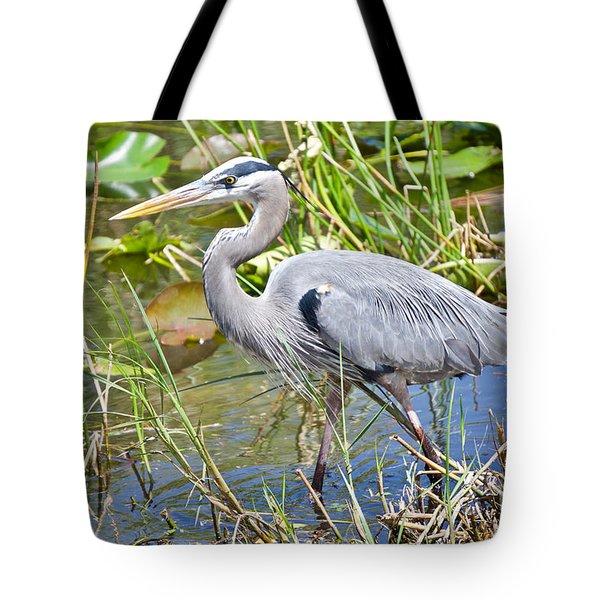 Swamp Stomp Tote Bag