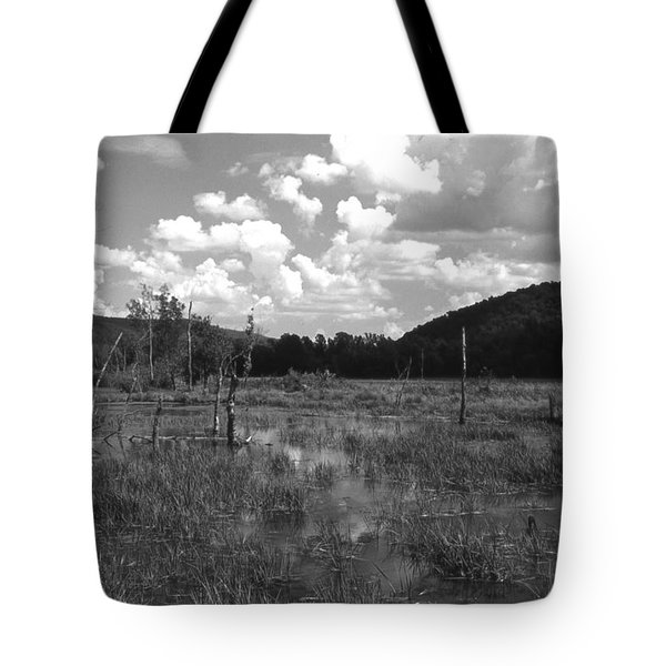 Tote Bag featuring the photograph Swampoem by Curtis J Neeley Jr