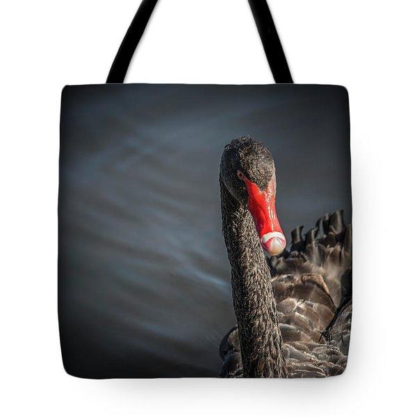 Swan 2  Tote Bag