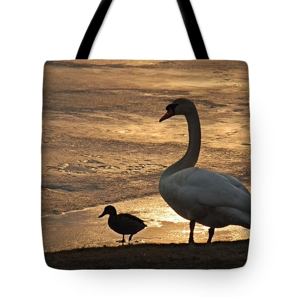 Tote Bag featuring the photograph Swan And Baby At Sunset by Richard Bryce and Family