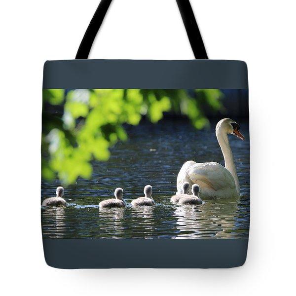 Swan And Cygnets Stony Brook New York Tote Bag