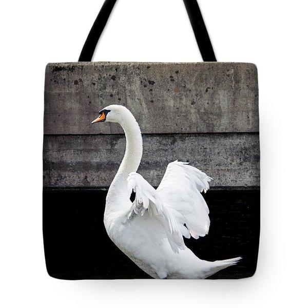 Swan At The Bridge Tote Bag