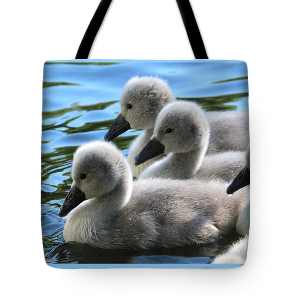 Swan Cygnets Stony Brook New York Tote Bag