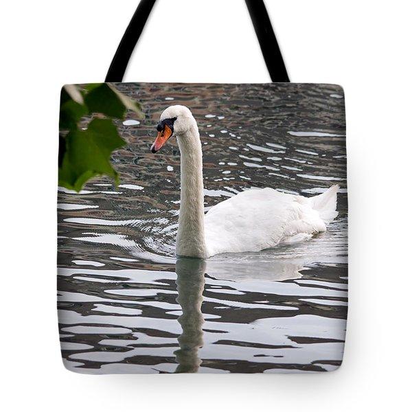 Swan Framed By Maple Leaves Tote Bag