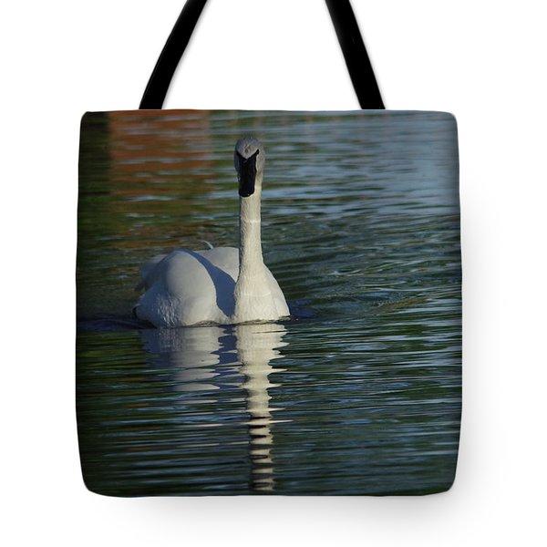 Swan In Calm Waters Tote Bag