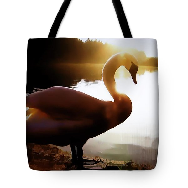 Swan In Evening Sun Tote Bag by Linda Phelps