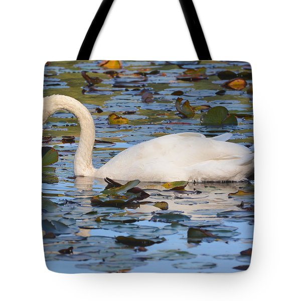 Swan In The Water Lilies Tote Bag