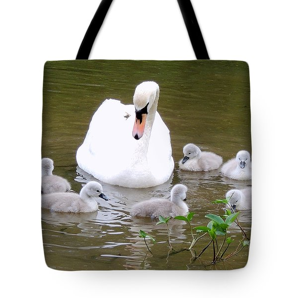 Swan Lake 1 Tote Bag by Bill Holkham