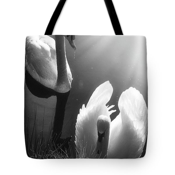 Swan Lake In Winter -  Kingsbury Nature Tote Bag by John Edwards
