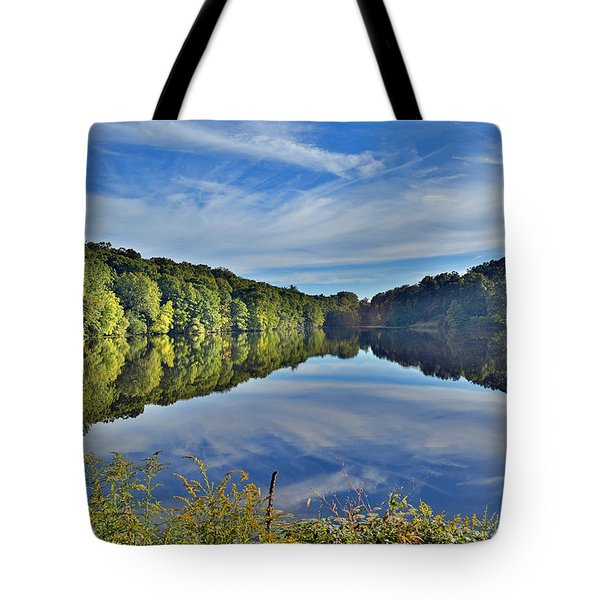 Swan Lake Times Two Tote Bag by Jeffrey Friedkin