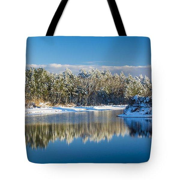 Swan Lake Winter Tote Bag