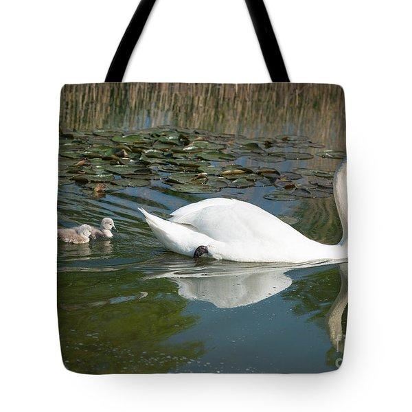 Swan Scenic Tote Bag