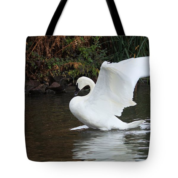 Swan Stretching Its Wings Tote Bag