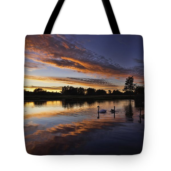 Swan Sunset Tote Bag
